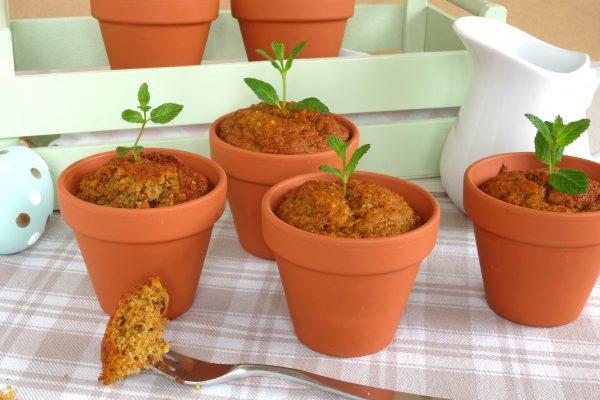 Karotten Küchlein im Blumentopf