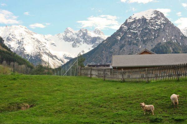 Brand in Vorarlberg