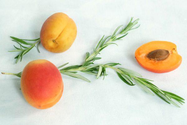 Aprikosen mit Rosmarin