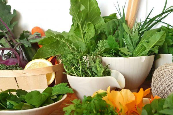 Zutaten für Wildkräuterrezept