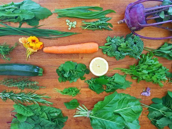 Gemüse und Wildkräuter